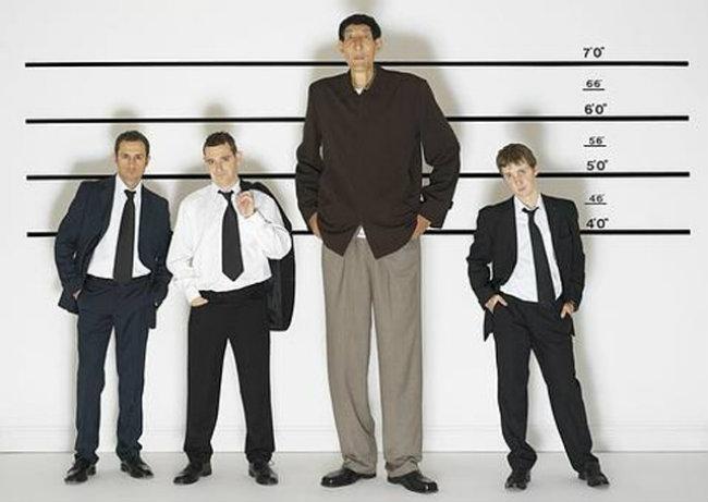 estatura y tamaño del pene
