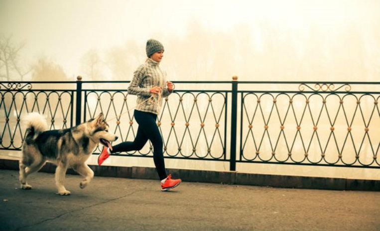 hacer ejercicio con tu mascota, hacer ejercicio con tu perro, beneficios, paseos con tu perro, mascotas, perros, ejercicio, es mejor hacer ejercicio con tu perro, salud, 5 beneficios, Sports World, caminatas, mejorar salud
