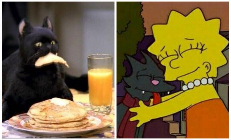 Día de los gatos: Los mejores videos de mininos de Youtube