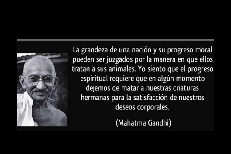 Gandhi 10 Hechos Que Lo Hicieron Un Luchador De10
