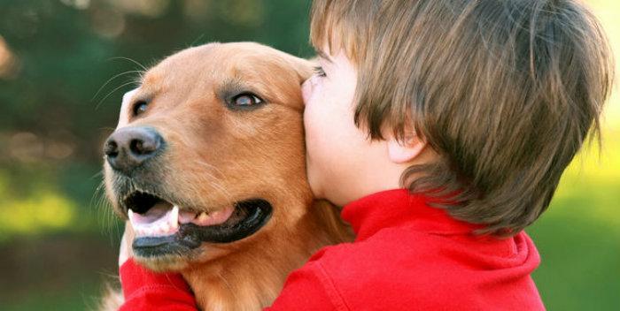 niño con su mascota, perro
